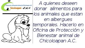 donar_croquetas