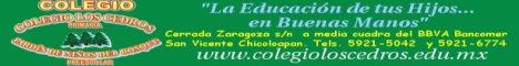 Primaria Colegio Cedros y Jard�n de Ni�os del Bosque